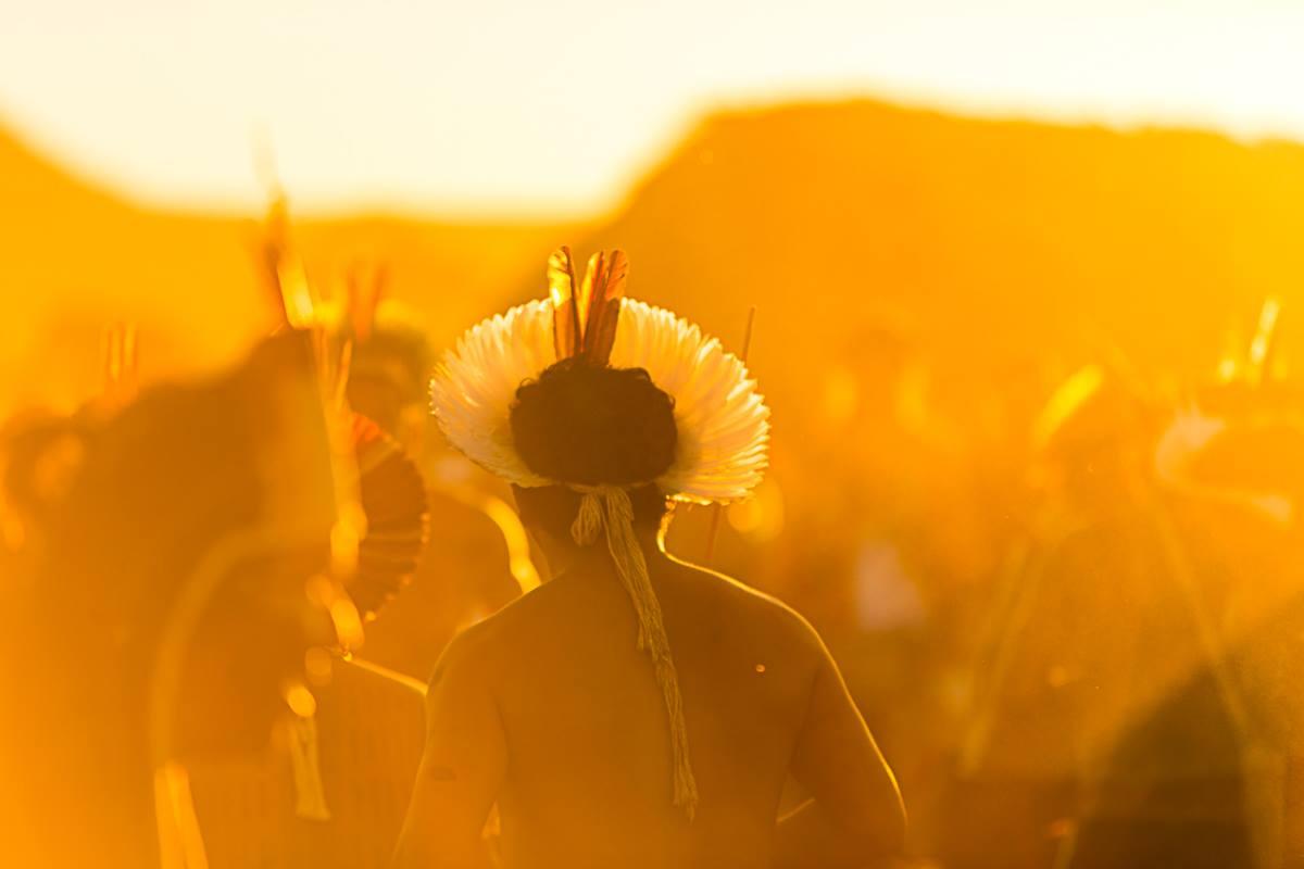 cocar indígena brasileiro