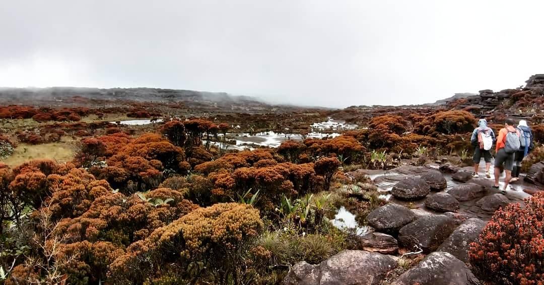 trekking-monte-roraima-gran-sabana-venezuela